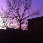 意大利冬天的黎明从我家里书房看到的