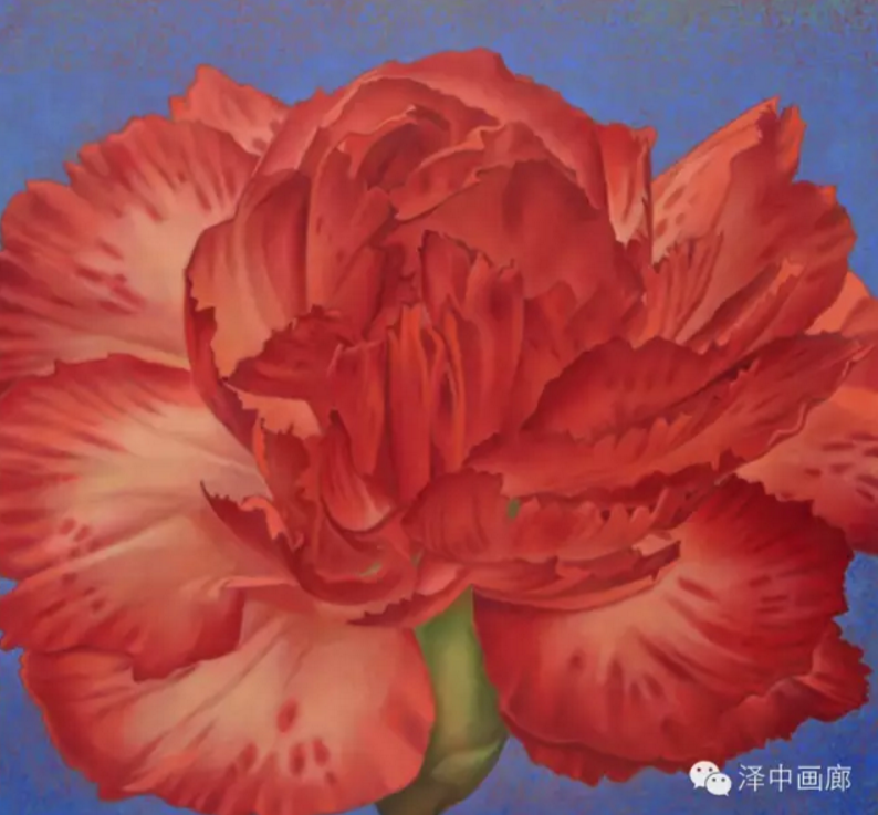 Flower 04 (Red Carnation) by Piers Williams