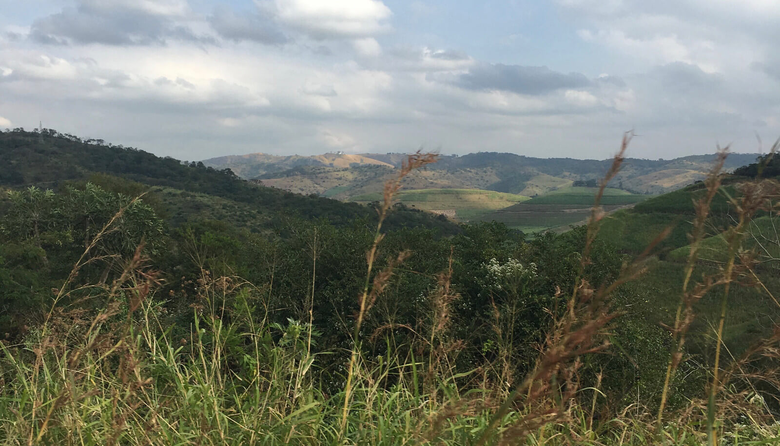 Inyezane, where W J S Newmarch fought his first battle against the Zulus on 22 January 1879